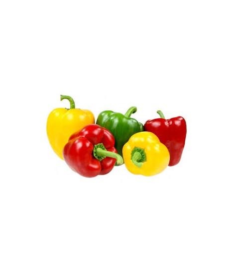 Peperoni origine Italia