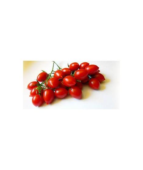 Pomodoro ciliegino/datterino